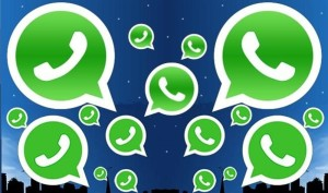whatsapp-tfj